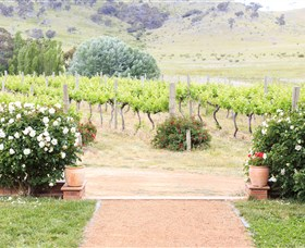 Brindabella Hills Winery - Accommodation Sydney