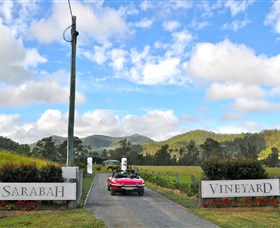 Sarabah Estate Vineyard - Accommodation Sydney