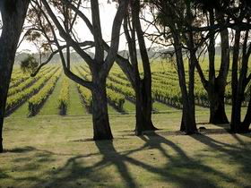 Henry's Drive Vignerons - Accommodation Sydney