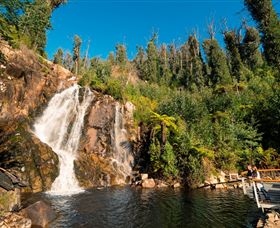 Steavenson Falls Marysville - Accommodation Sydney