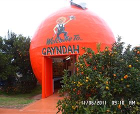 Gayndahs Big Orange - Accommodation Sydney