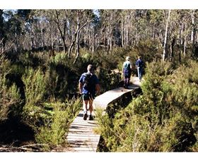Hume and Hovell Walking Track - Henry Angel Trackhead - Accommodation Sydney