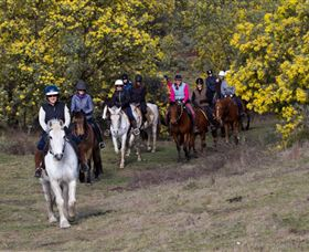 Burnelee Excursions on Horseback - Accommodation Sydney