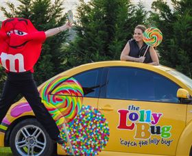 The Lolly Bug - Accommodation Sydney
