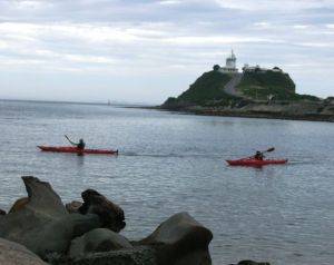 Newcastle Kayak Tours - Accommodation Sydney