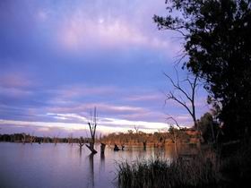 Loch Luna Game Reserve and Moorook Game Reserve - Accommodation Sydney