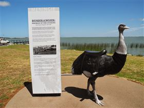 Birdman of the Coorong - Accommodation Sydney