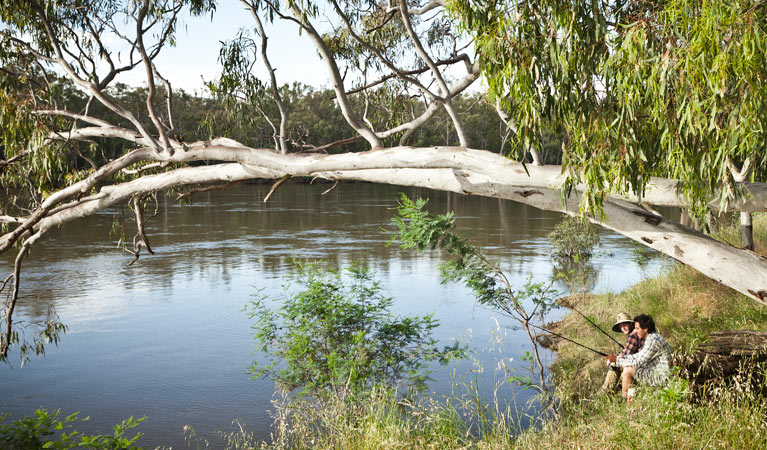 Murray Valley National Park - Accommodation Sydney