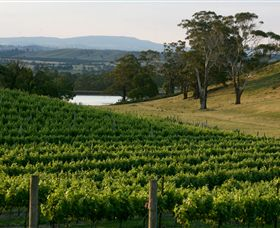 Granite Hills Winery - Accommodation Sydney