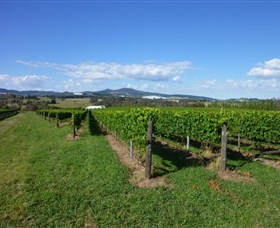 Hedberg Hill Wines - Accommodation Sydney