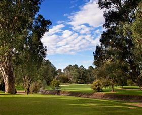 Commercial Golf Course - Accommodation Sydney