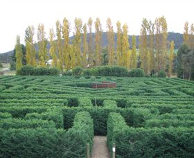 Brookfield Maze - Accommodation Sydney