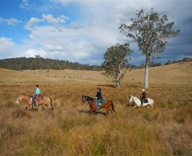 Chapman Valley Horse Riding - Accommodation Sydney