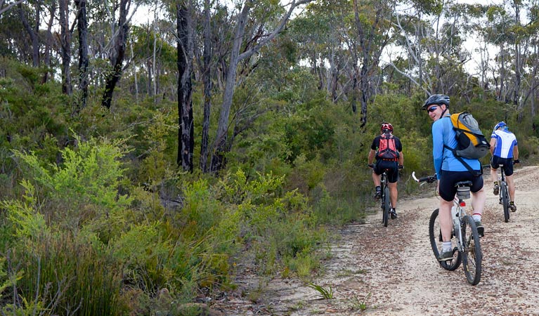 McMahon's Point ride - Wentworth Falls - Accommodation Sydney