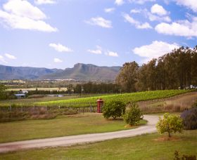 Catherine Vale Wines - Accommodation Sydney