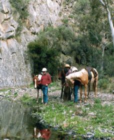 Yarramba Horse Riding