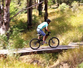 The Steps Mountain Bike Park