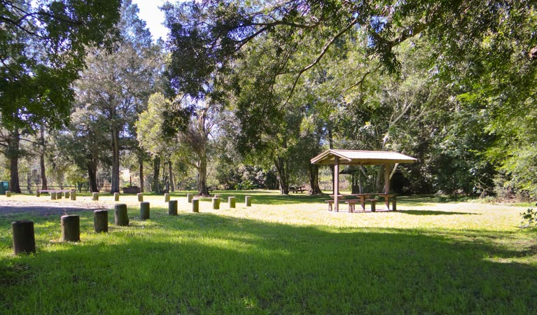 Moore Park picnic area - Accommodation Sydney