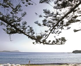 Terrigal Beach - Accommodation Sydney