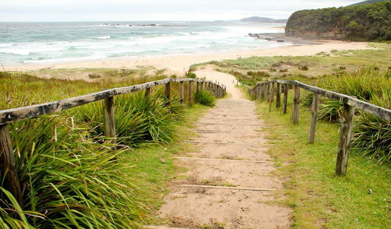Pretty Beach to Durras Mountain walking track - Accommodation Sydney