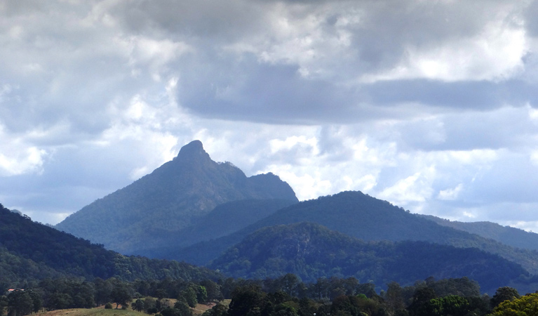 Wollumbin National Park - Accommodation Sydney