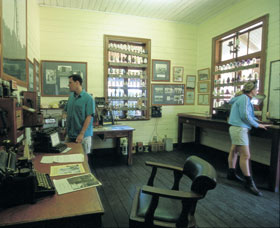 Hamelin Pool Telegraph Station - Accommodation Sydney