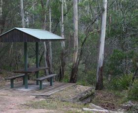 White Rock River picnic area - Accommodation Sydney