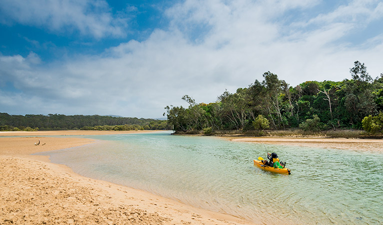 Moonee Beach Nature Reserve - Accommodation Sydney