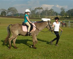 Port Macquarie Horse Riding Centre - Accommodation Sydney