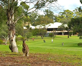 Pambula Merimbula Golf Club - Accommodation Sydney