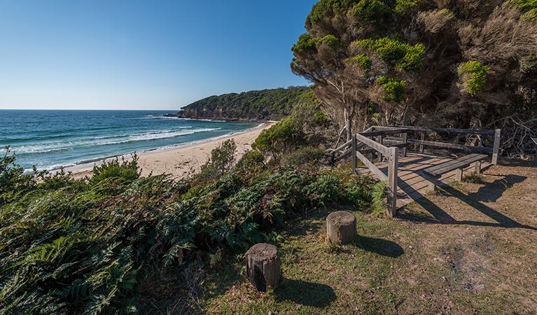 Terrace Beach and Lennards Island - Accommodation Sydney