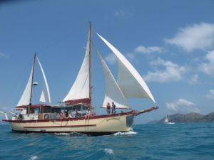 Adventure Cruise Dive and Outer Reef - Whitsundays Sailing Adventures - Accommodation Sydney
