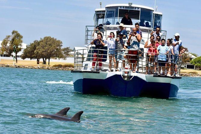 Mandurah Dolphin and Scenic Canal Cruise - Accommodation Sydney