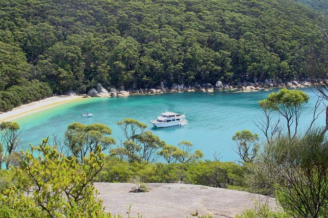 Wilsons Promontory Full Day Cruise - Accommodation Sydney