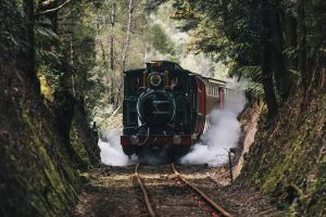 West Coast Wilderness Railway River and Rainforest from Strahan - Accommodation Sydney