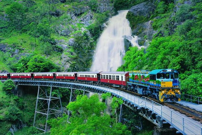 Full-Day Tour with Kuranda Scenic Railway Skyrail Rainforest Cableway and Hartley's Crocodile Adventures from Cairns - Accommodation Sydney