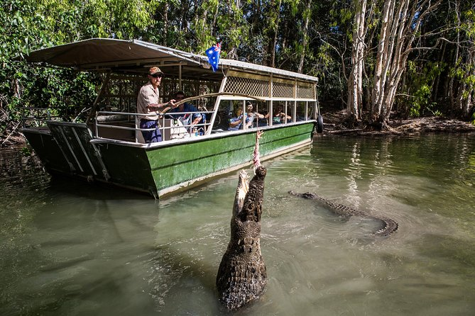 Hartley's Crocodile Adventures Day Trip from Palm Cove - Accommodation Sydney
