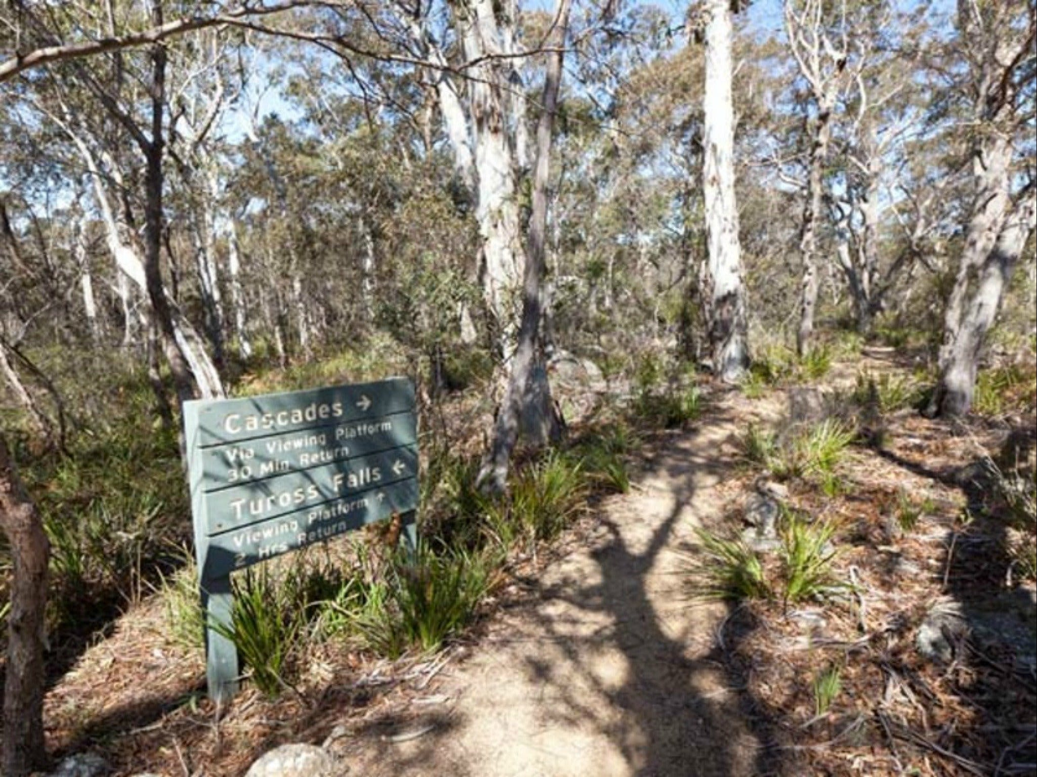 Cascades walking track and viewing platform - Accommodation Sydney