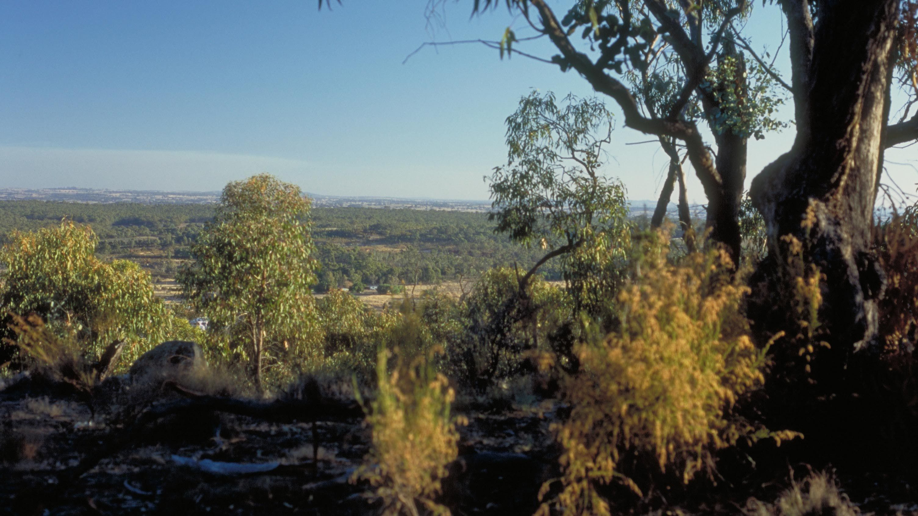 Heathcote-Graytown National Park - Accommodation Sydney