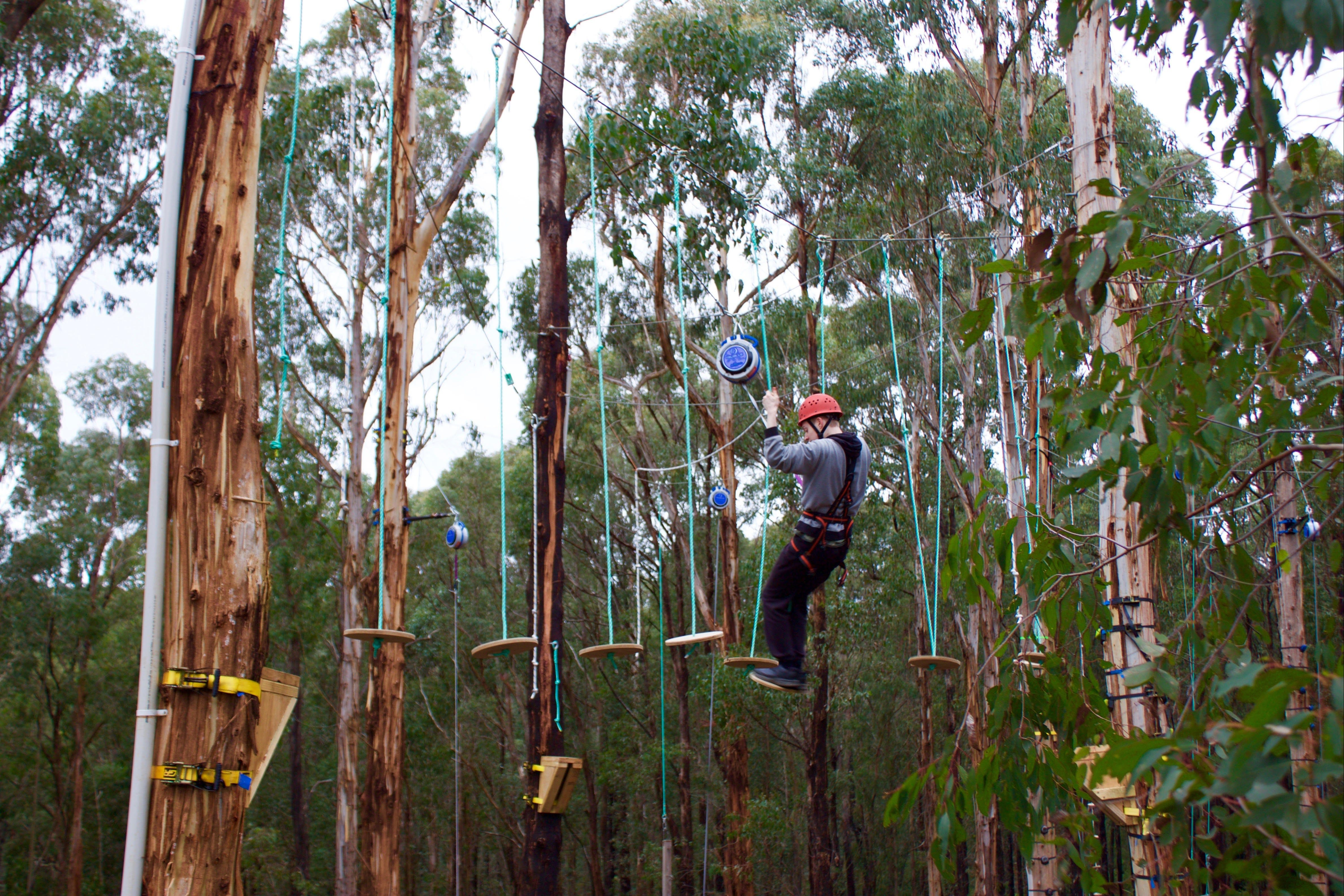 Kinglake Forest Adventures - Accommodation Sydney