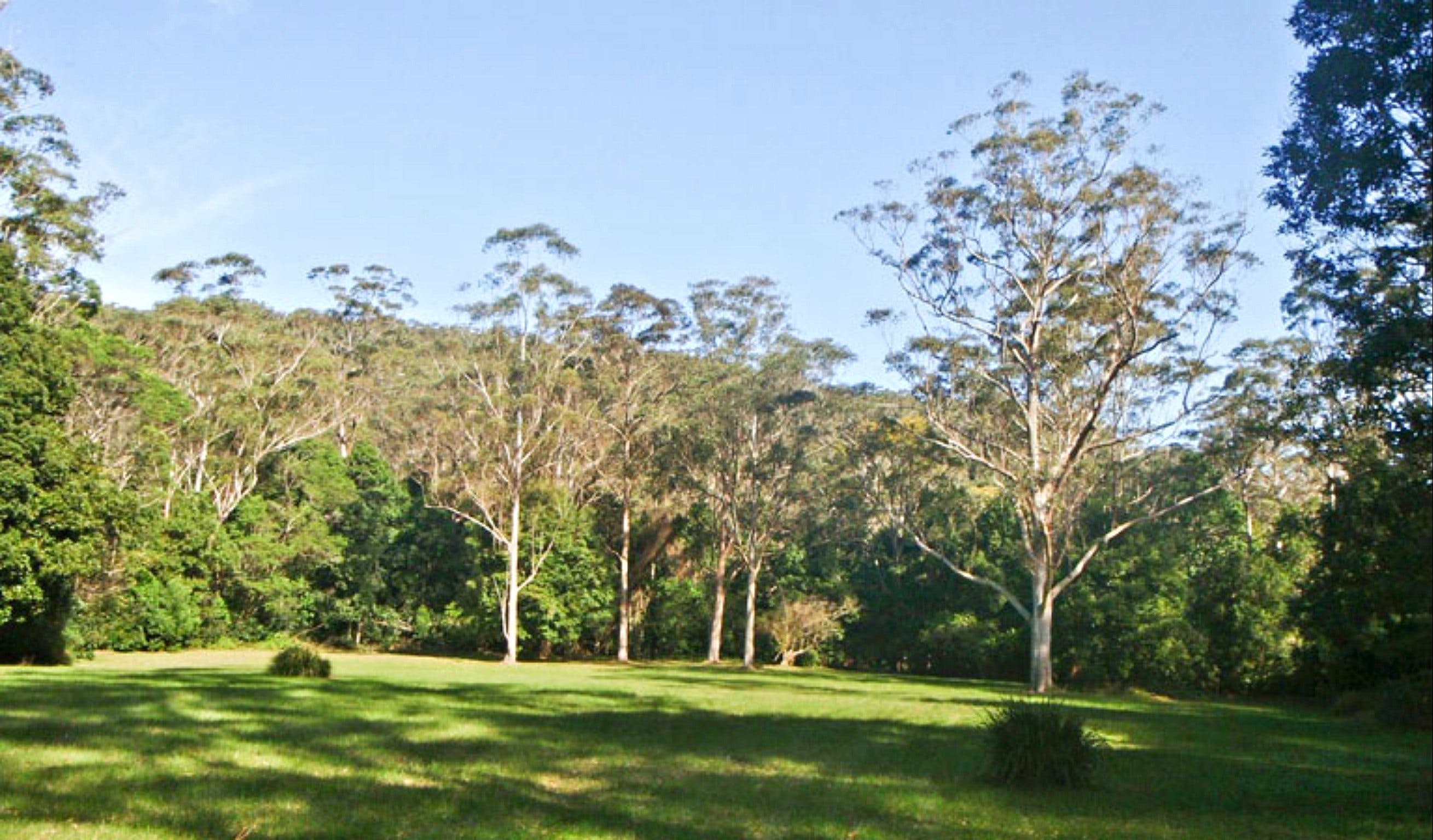 Red Cedar Flat Picnic Area - Accommodation Sydney