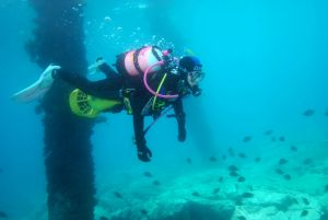 Shellharbour Scuba  and Photography Centre - Accommodation Sydney