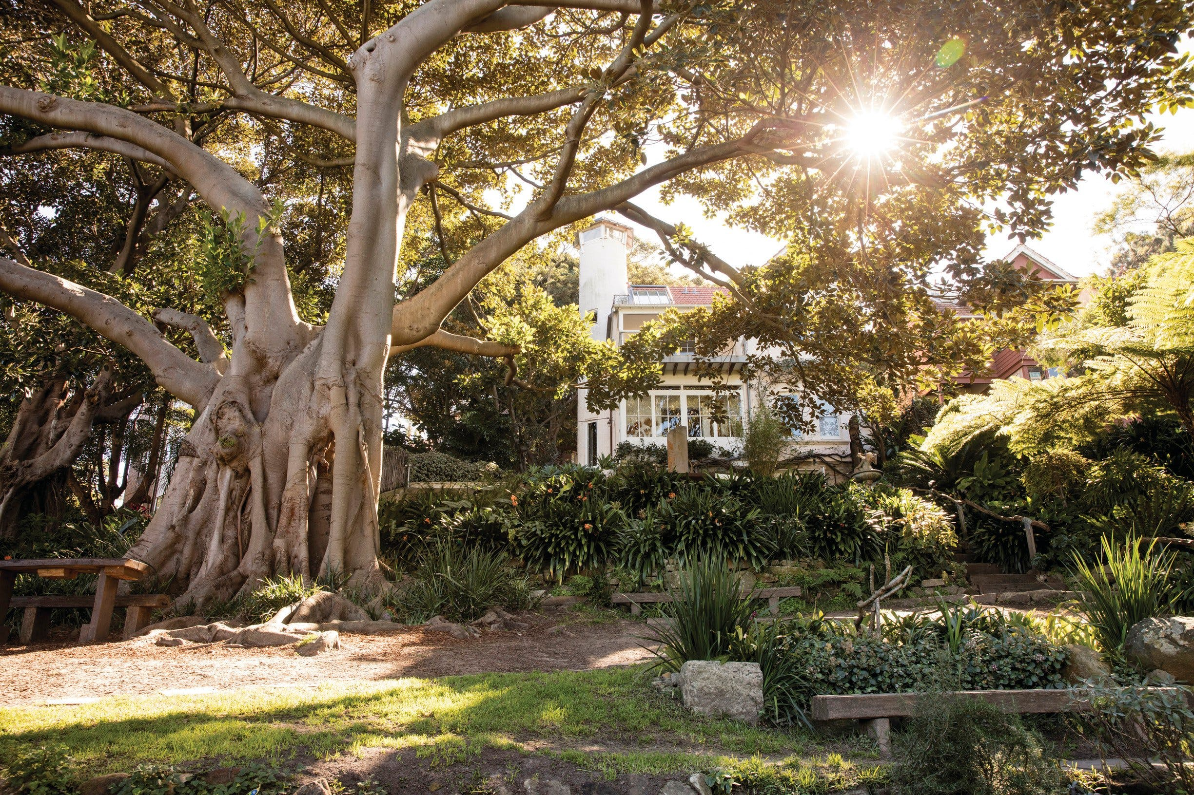 Wendy Whiteley's Secret Garden - Accommodation Sydney
