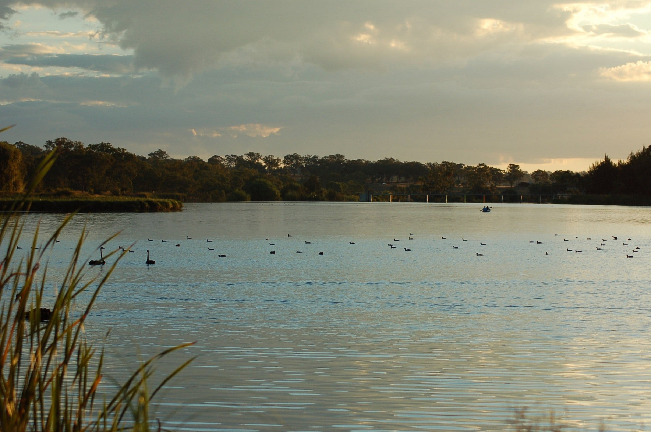 Lake Inverell Reserve - Accommodation Sydney