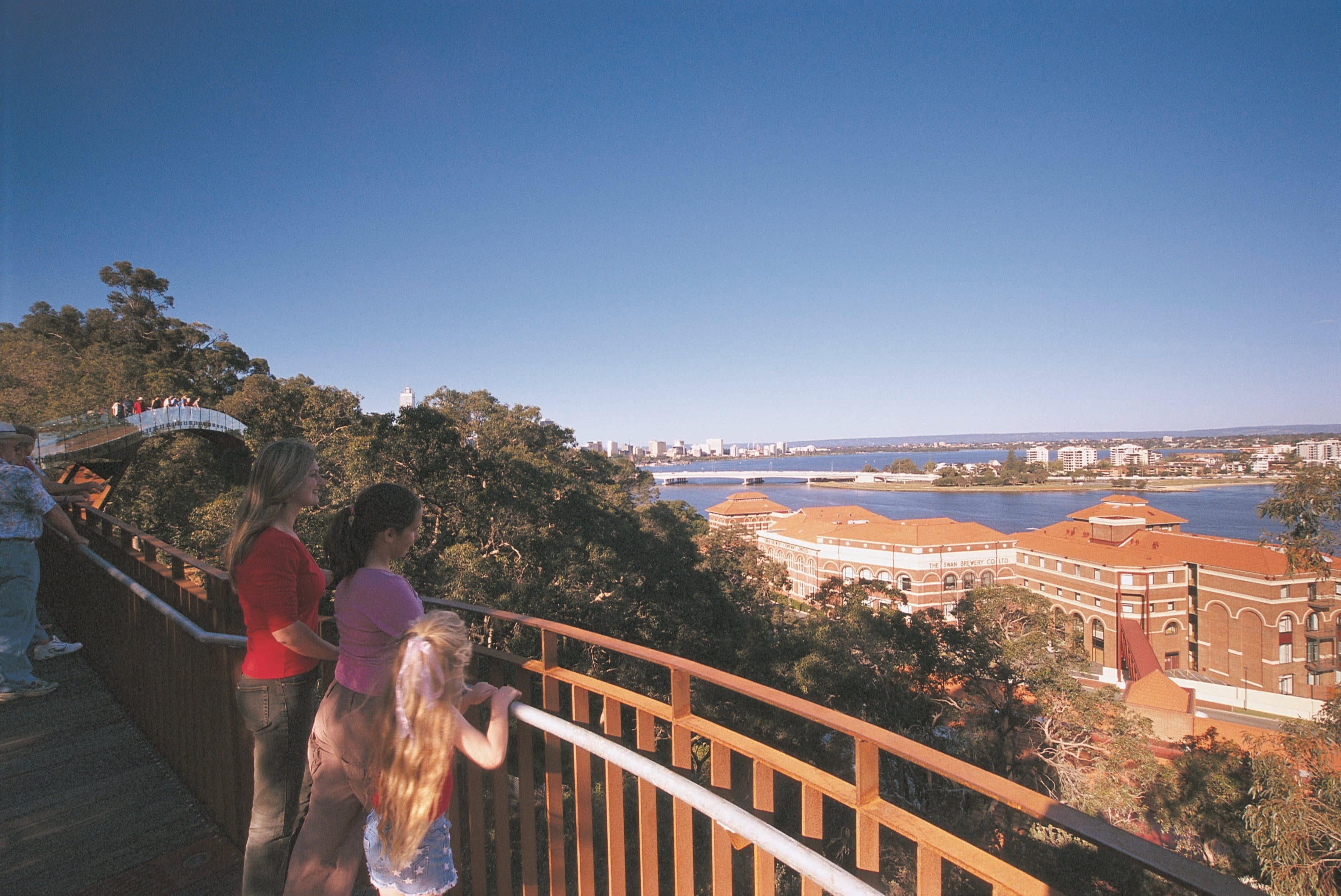 Lotterywest Federation Walkway - Kings Park - Accommodation Sydney