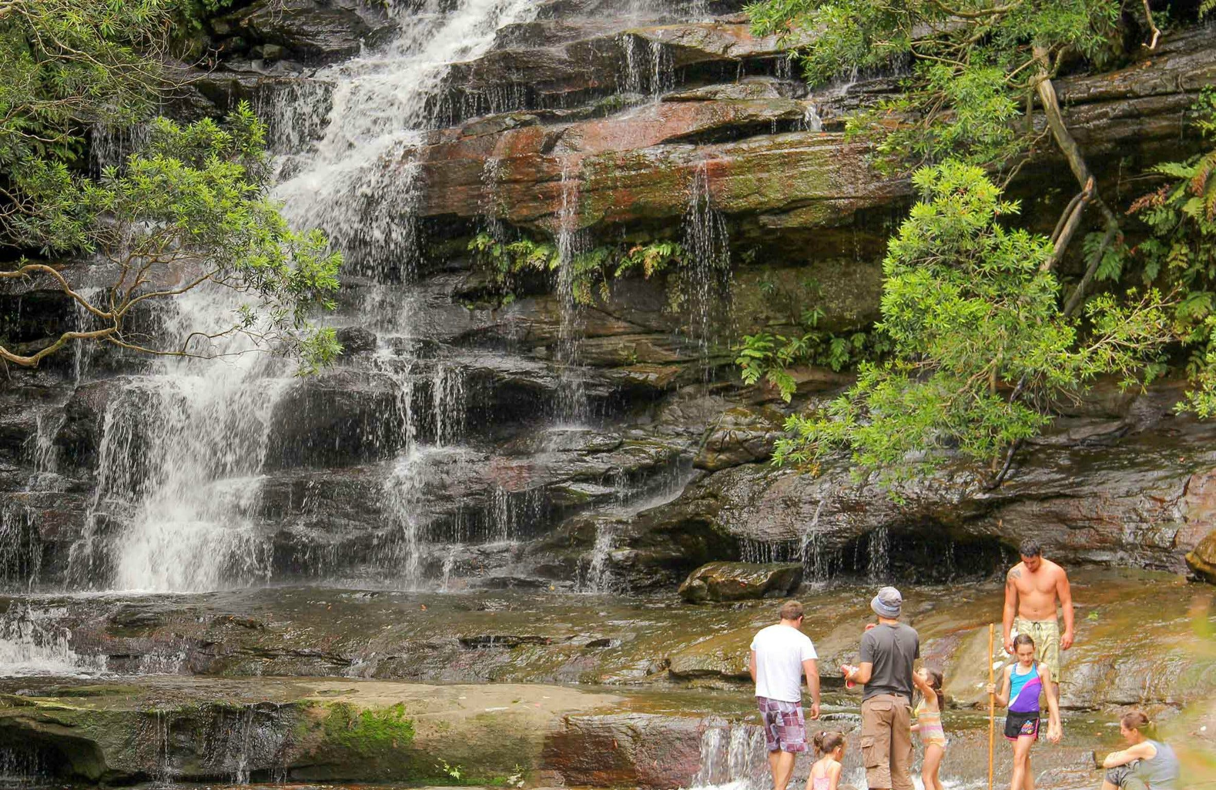 Somersby Falls Picnic Area - Accommodation Sydney