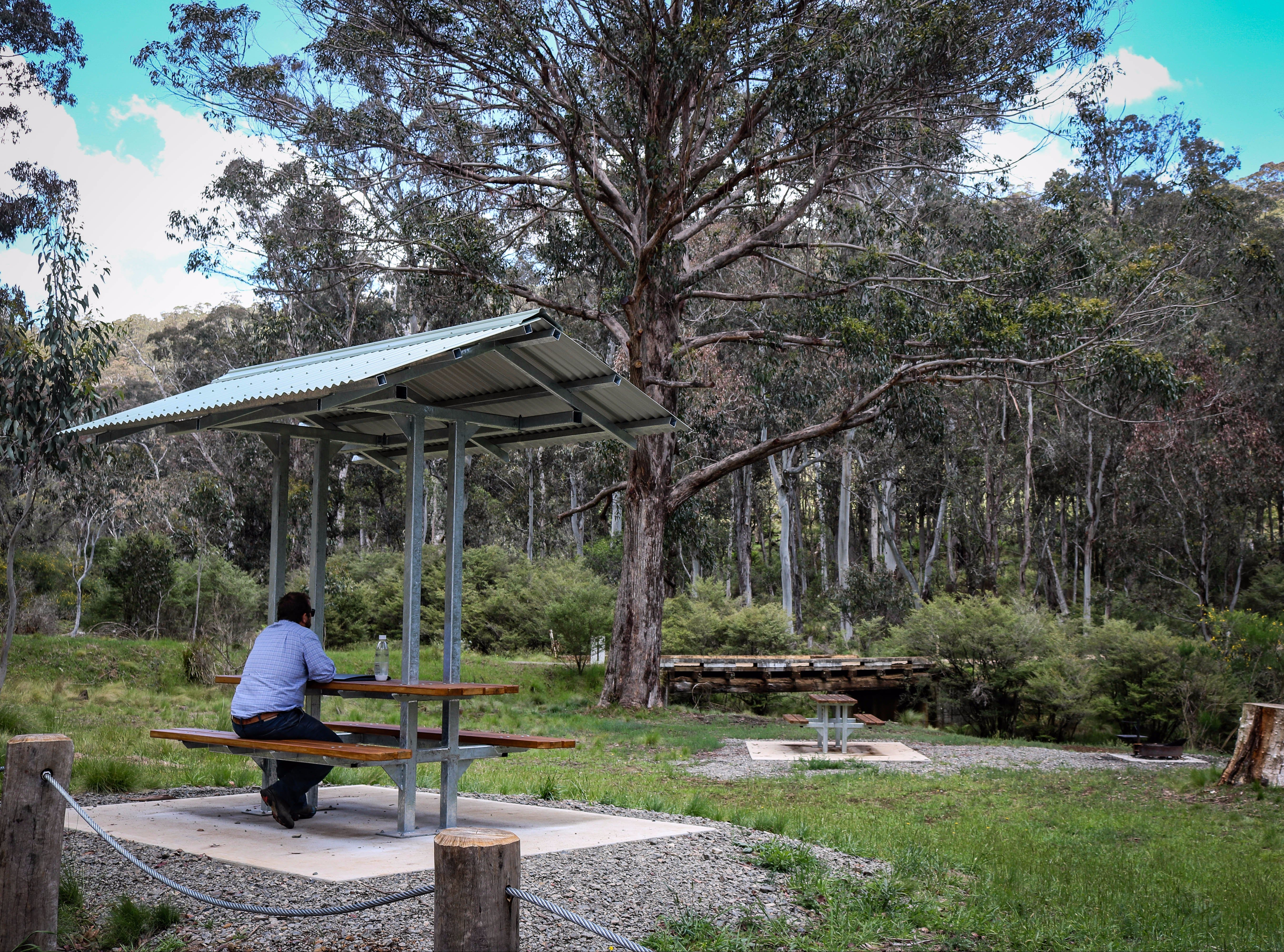 Barrington Tops State Forest - Accommodation Sydney