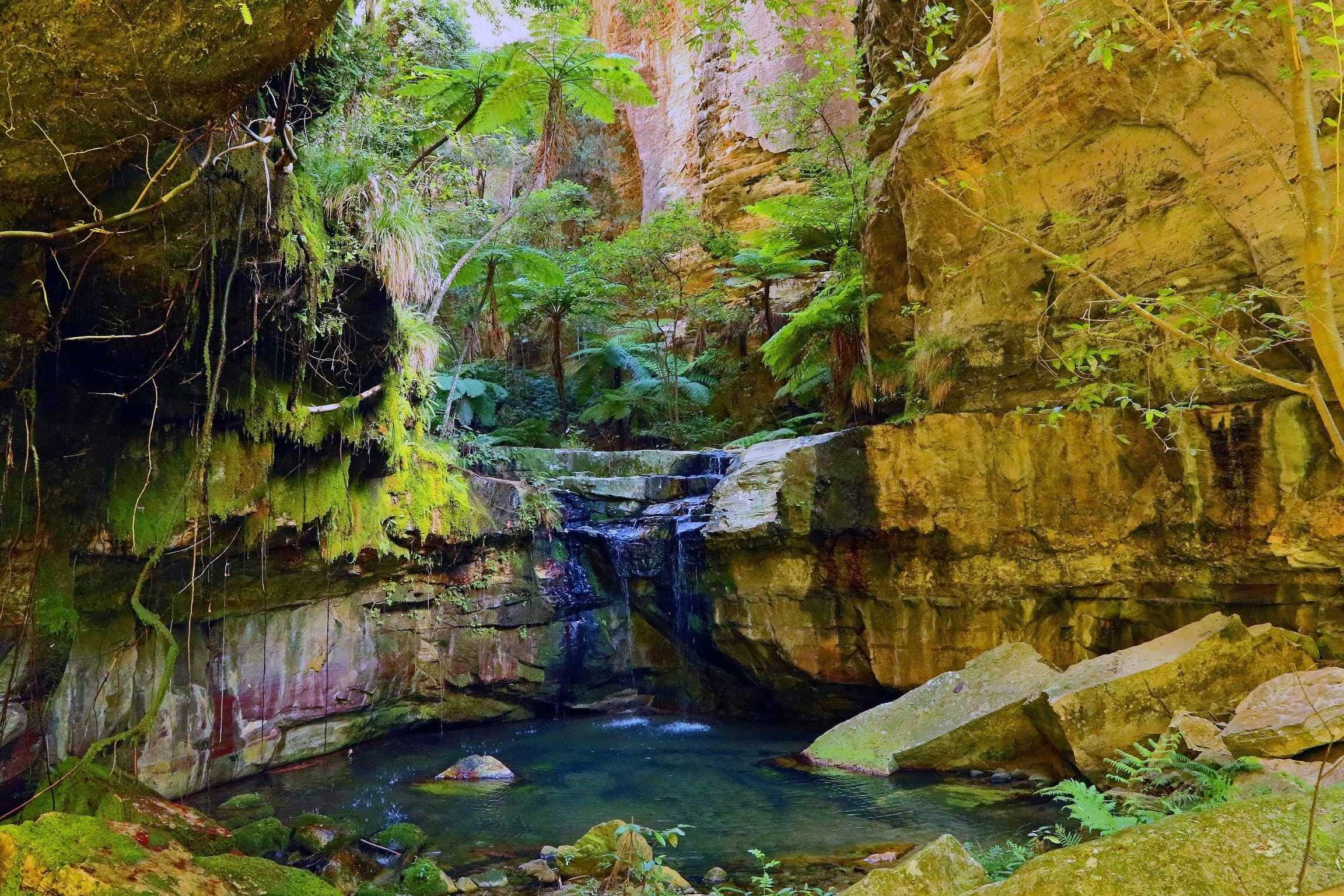 Glimpse of the Outback 5 Day Tour - Roma and Surrounds - Accommodation Sydney