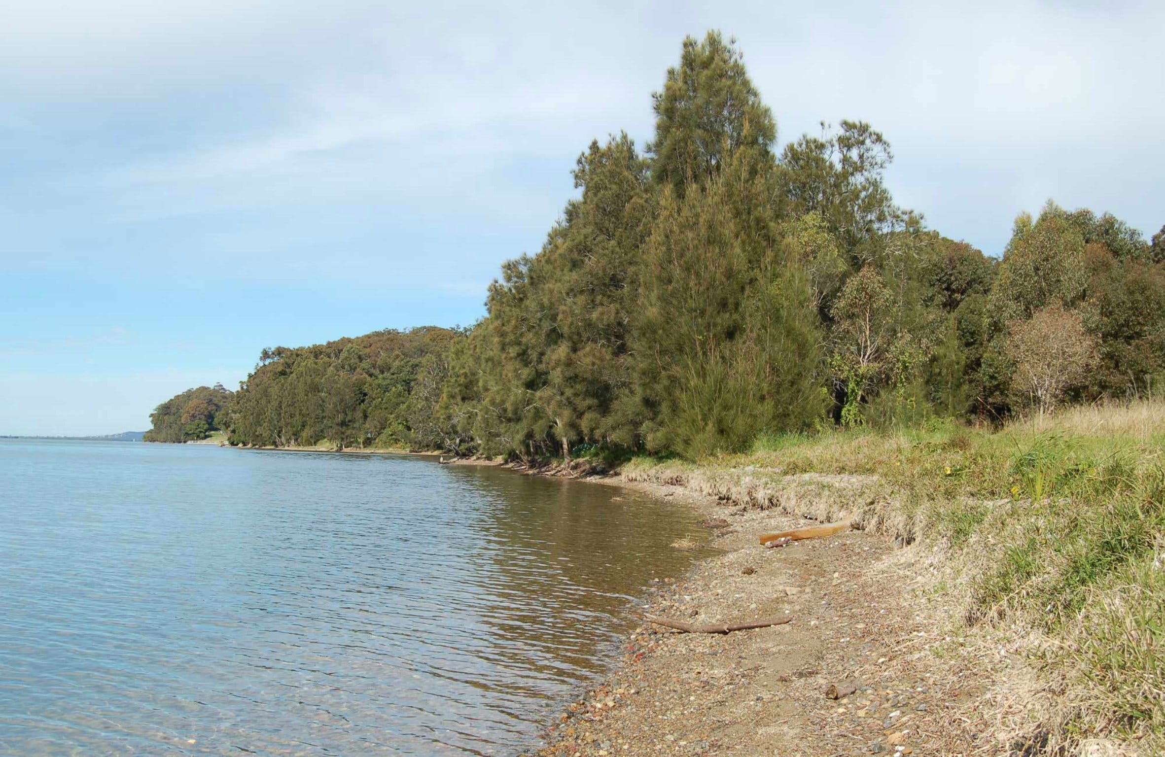 Lake Macquarie State Conservation Area - Accommodation Sydney