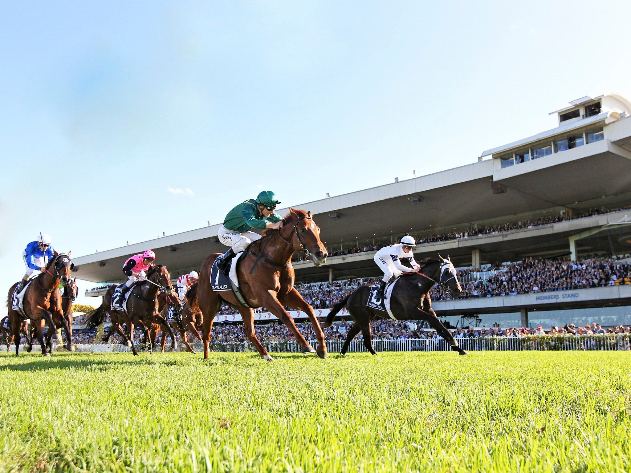 Rosehill Gardens Racecourse - Accommodation Sydney